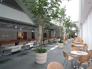 東京都済生会中央病院 エコロジーガーデン グリーン・オフィシャル・スポンサー